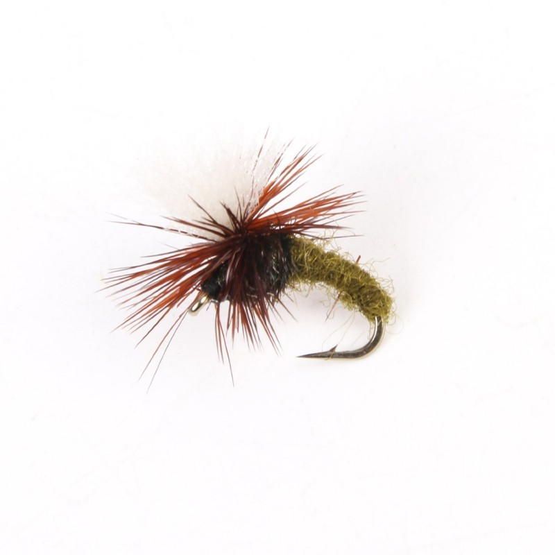 Dry flies assortment for Fly fishing catalog