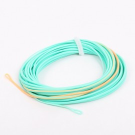 Shooting Head Fly Line With 2 Welded Loops 20-25FT 300-650gr Double Color Floating Fly Line