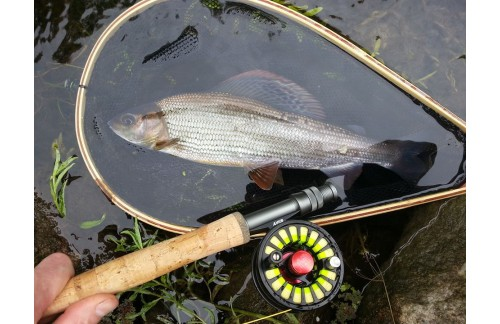 AVID FLY REEL——How easy to use this fly reel!