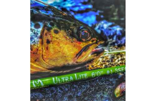 Perfect Trip for Dillon Montana Fly Fishing