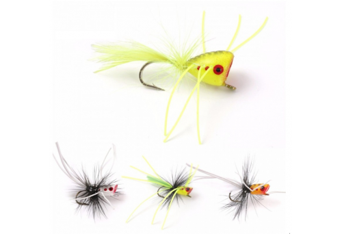 5 Questions About Popper Flies