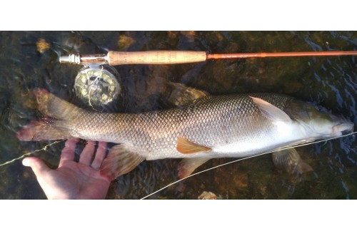 Skyhigh expert fly rod test
