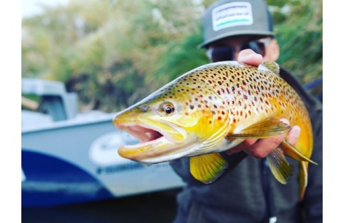 Fly Fishing Casper Wyoming: The Best Spot for Anglers
