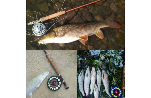 Learn to Become a Fly Fishing Guide