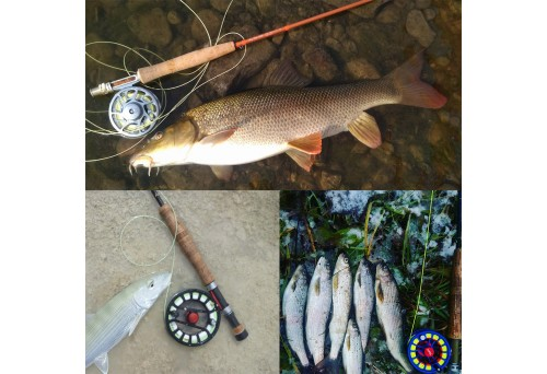 Four Simple Steps on How to Make Your Own Leaders for Fly Fishing