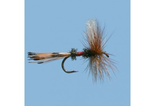 How To Tie A Needle Knot Fly Fishing?