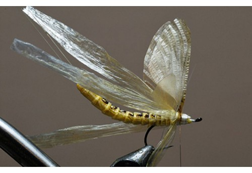 How to Make Wings for Fly Tying?