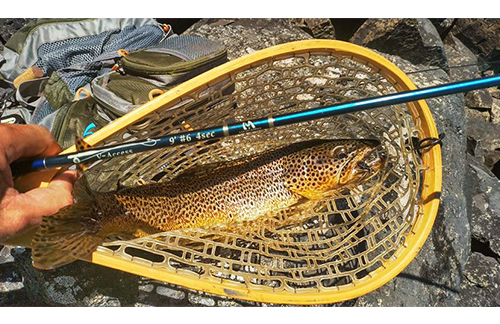 Saltwater Fly Fishing Stripping Basket