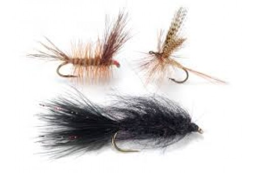 Ultimate Guide on How to Tie a Fly Fishing Fly Successfully