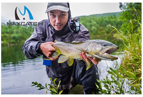 How to Fly Fish Sustainably in Basalt and Everywhere