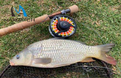 Guide to Basic Instruments in A Beginner Fly Fishing Combo