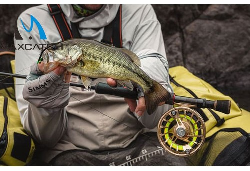 What Are the Best Fly Fishing in Colorado Spots You Can Visit?