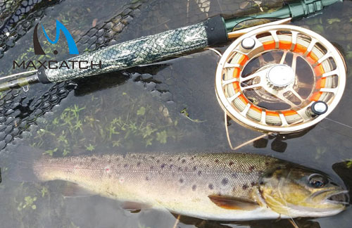 What is the Best Fly Fishing Setup for Beginners?
