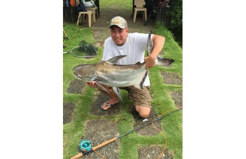 13-15kg from V-Spey rod and Sparta reel