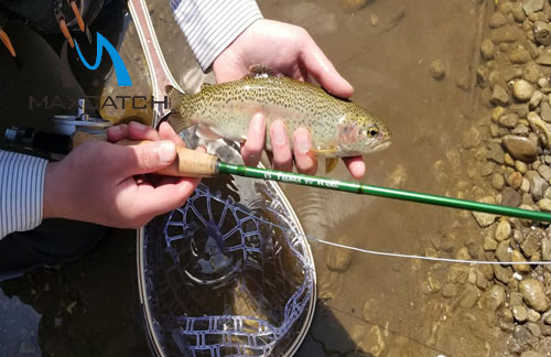 The Advantage To Buy Fly Fishing Tackle Online