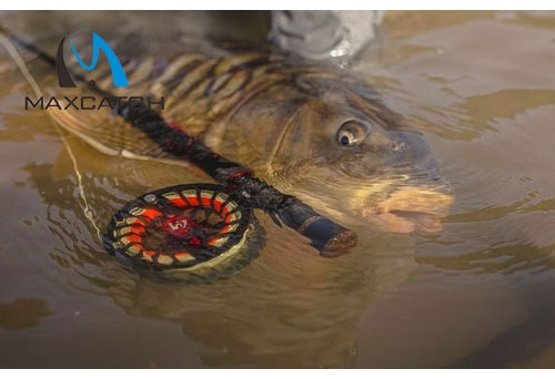 How to Catch and Release Tools for Fly Fishing?