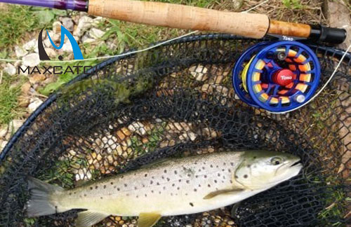 What is the importance of Catskill fly fishing?