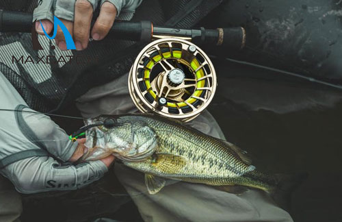 How to Choose the Best Wading Pants for Fly Fishing?