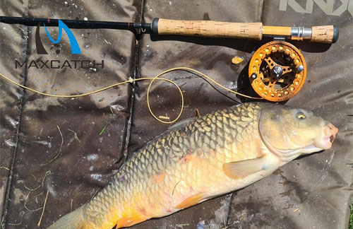 Do You Know Closeout Fly Fishing Equipment?
