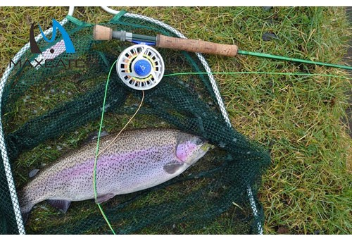 What Are the Major Equipment Needed for Fly Fishing?