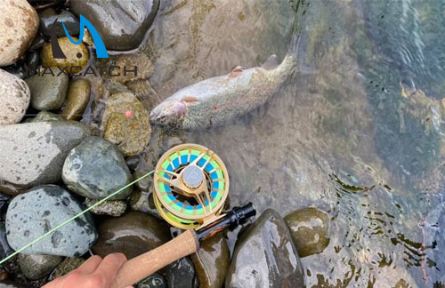 Do You Know Expensive Fly Fishing Reels?