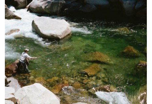 What Are the Best Filson Fly Fishing Vests?