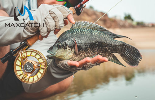 Do You Know Florida Fly Fishing Guides?