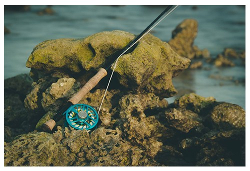 Fly Fishing for Beginners What Equipment