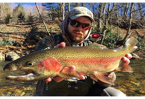 Fly Fishing for Trout: A complete Guide