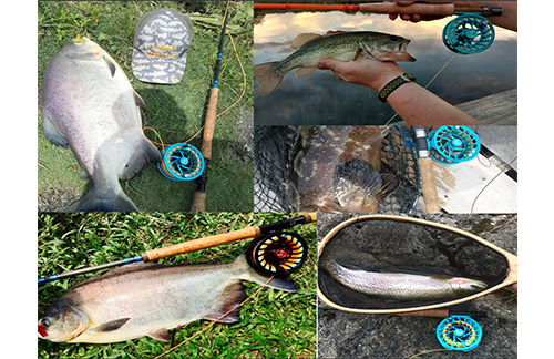 3 Ways to go Fly Fishing with a Spinning Rod