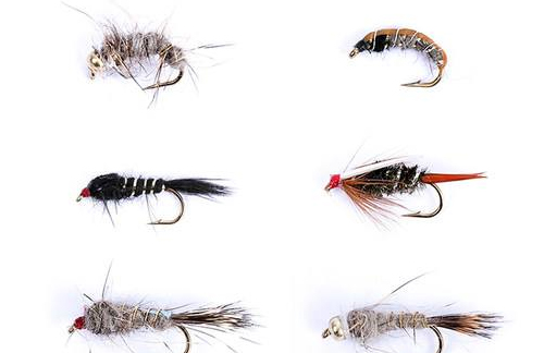How to Master the Best Fly Tying Patterns