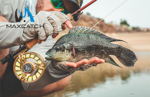 How to Go Fly Fishing Green River Utah?