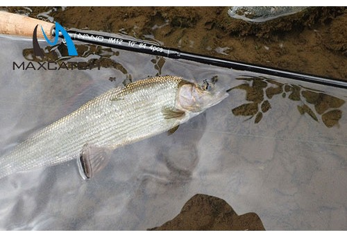 Where to Buy Fly Fishing Rods Online for Hassle-free Shopping
