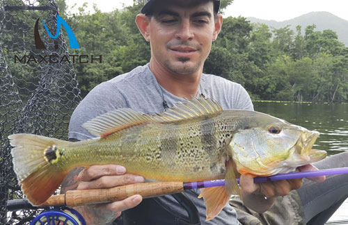 Do You Know the Fly Fishing Shops in the Bay Area?