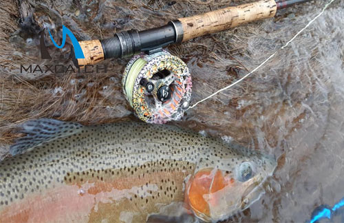 How to get the best fly fishing spinners?