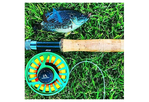 You can buy and learn a lot from Hayward fly fishing store