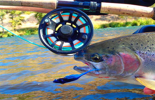 Nobel service of project healing waters fly fishing