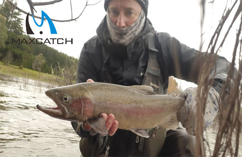 What to Expect from Fly Fishing in Kamchatka?