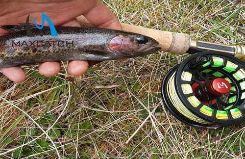 Discover Some of the Best Leather Fly Fishing Accessories