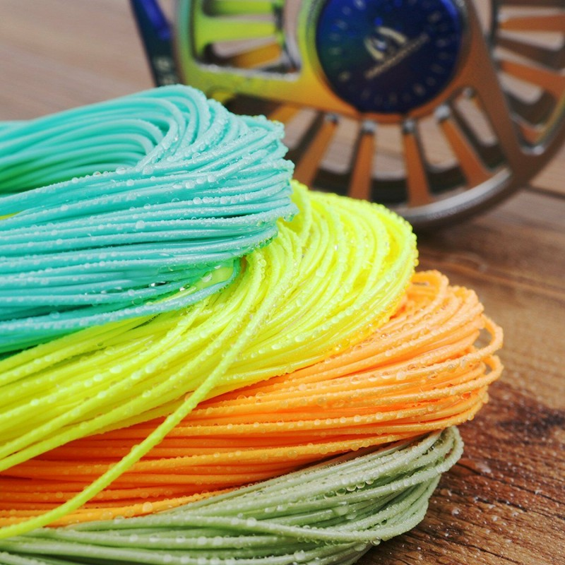 Weight Forward Floating 100FT Fly Line with Loops