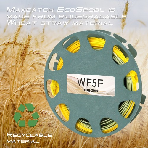 Maxcatch Gold Line with HEALTHY Wheat Spool and Box