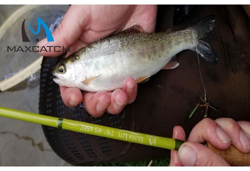 What is a Pocket Fly Fishing Pod?