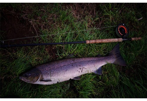 A salmon fly rod with a difference!