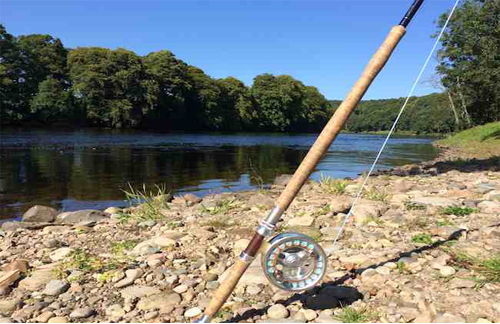 Top benefits of Salmon fly fishing rod