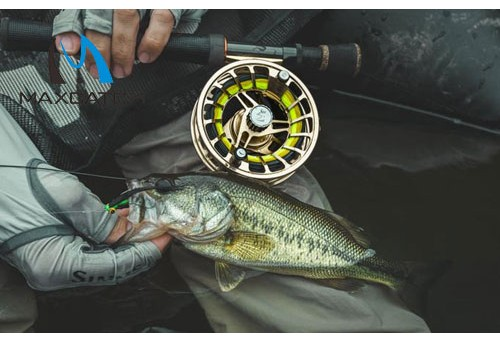 What Is Saratoga Fly Fishing?