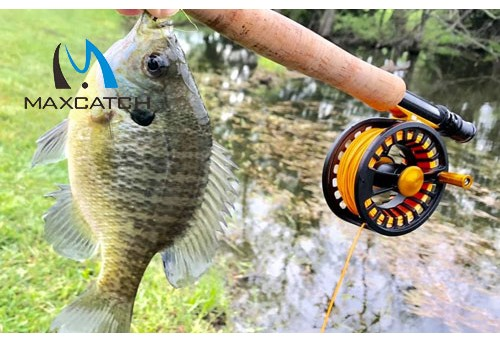 What are the basic techniques for Smallmouth Bass Fly Fishing?