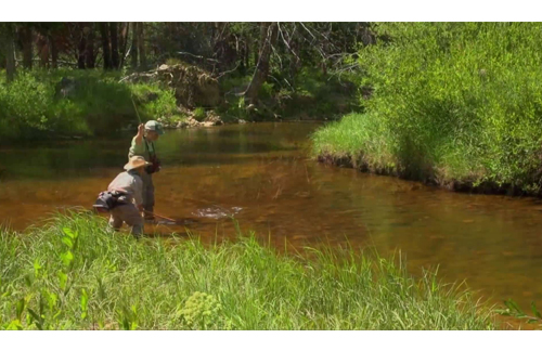 Topnotch features of stillwater fly fishing