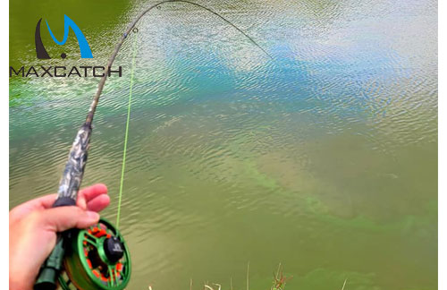 Want to Buy the Best Summer Fly Fishing Gear?