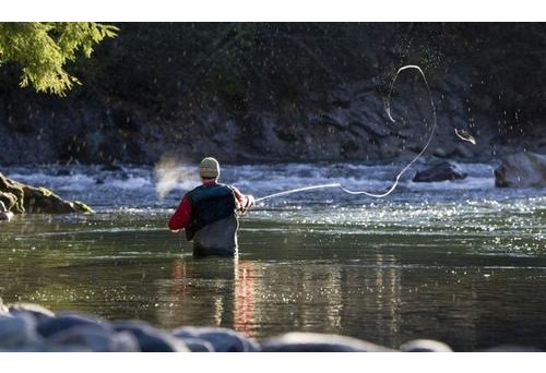 Top of the line telluride fly fishing for your adventure