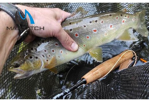 How to Get into The Fly Fishing Show Denver?